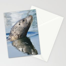 Harbor Seal Stationery Cards