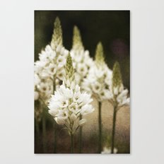 Candle Flowers Canvas Print