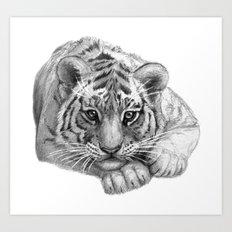 Tiger Cub SK119 Art Print