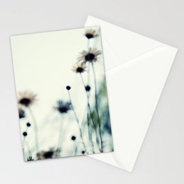field of daisies Stationery Cards