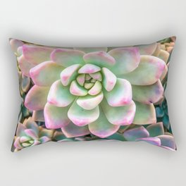 closeup green and pink succulent plant background Rectangular Pillow