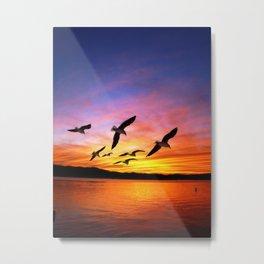 Seagull Sunset Metal Print