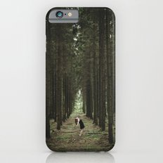 The Woods of St Olof 2 Slim Case iPhone 6