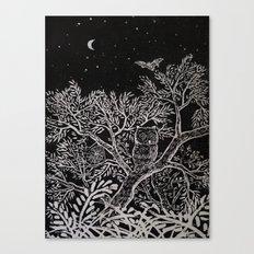 The night Canvas Print