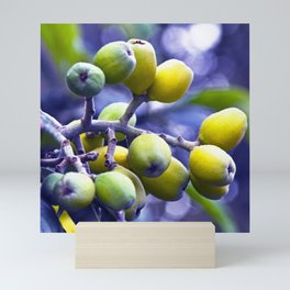 SICILIAN FRUITS Mini Art Print