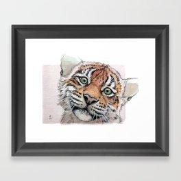 Tiger Cub 887 Framed Art Print