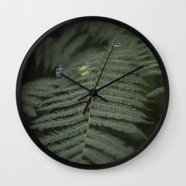 Plant -Fern Wall Clock