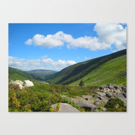Valley in the Wicklow Mountains Canvas Print