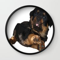 rottweiler Wall Clocks featuring Cute Rottweiler Puppy Vector by taiche