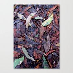 Rainforest No.3 Canvas Print