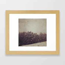 Winter Drift Framed Art Print