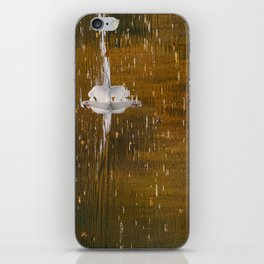 Strolling iPhone Skin