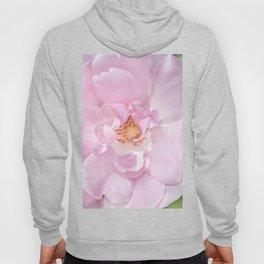 Pink Flora Hoody