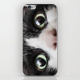 Funny Cat iPhone Skin