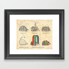 hedgehog goes rainbow Framed Art Print