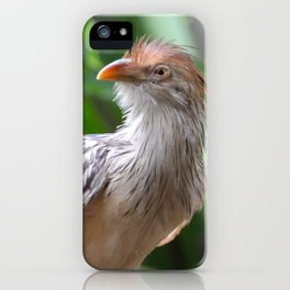 guira cuckoo iPhone Case