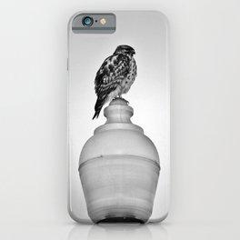 Lamppost Hawk iPhone Case