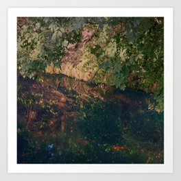 Galaxy In A Pond Art Print