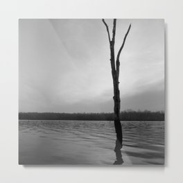 Stand Tall, Alone Metal Print