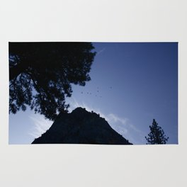 Birds Flying Over Yosemite Rug