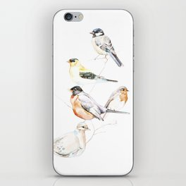 Birds of the Midwest iPhone Skin