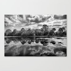 Green Cay Wetlands in Black and White Canvas Print