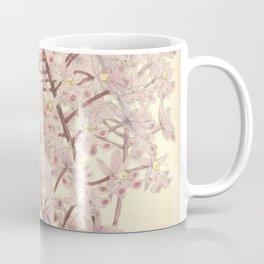 Epidendrum myrianthum Curtis' 92 (Ser. 3 no. 22) pl. 5556 (1866) Coffee Mug