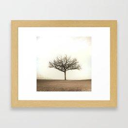 the lightning tree Framed Art Print
