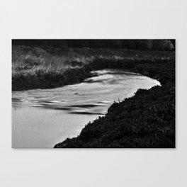 Nala/Olympia: A Case Study - Dream 01 Canvas Print