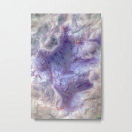 purple agate 0743 Metal Print