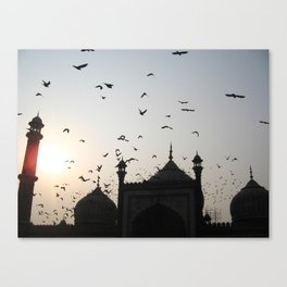 the flight home Canvas Print