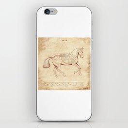 Da Vinci Horse: Canter iPhone Skin