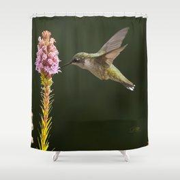 Hummingbird and flower II Shower Curtain