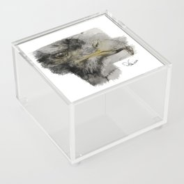 Eagle Acrylic Box