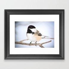 Up Close With A Chickadee Framed Art Print