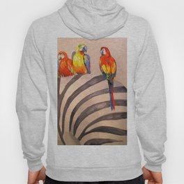 Parrots on Zebra Hoody