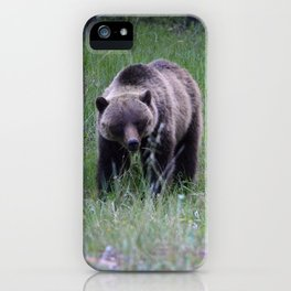 Grizzly mother & cub in Jasper National Park | Canada iPhone Case