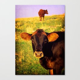 Eat More Chicken Canvas Print