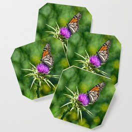 monarch with mustard Coaster