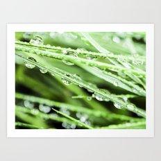 After The Rain - Green Macro Art Print
