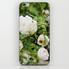 White roses iPhone Skin
