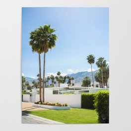 put the palm in palm springs Poster