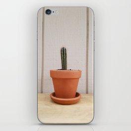 Tiny Cactus Against White Background iPhone Skin