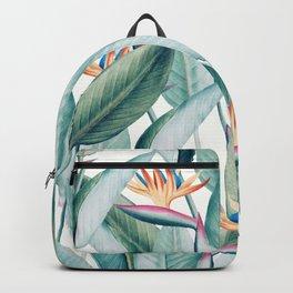 Back to Paradise Island, Bird of Paradise Floral Illustration, Vintage Botanical Nature Painting Backpack