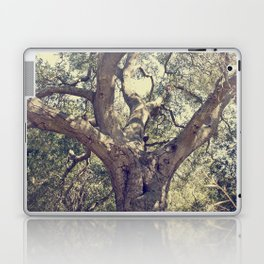 Mother Tree Laptop & iPad Skin