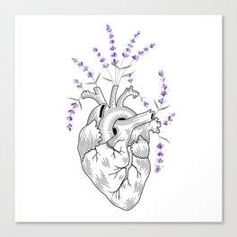 Lavender Human Heart Canvas Print