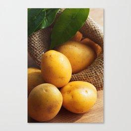Farmer potato for your Design in the kitchen Canvas Print