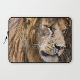 A Mane full of Roar Laptop Sleeve