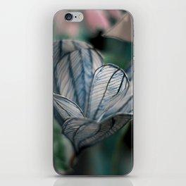 Crocus Vernus iPhone Skin