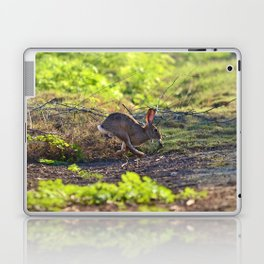 Bunny on the run! Laptop & iPad Skin